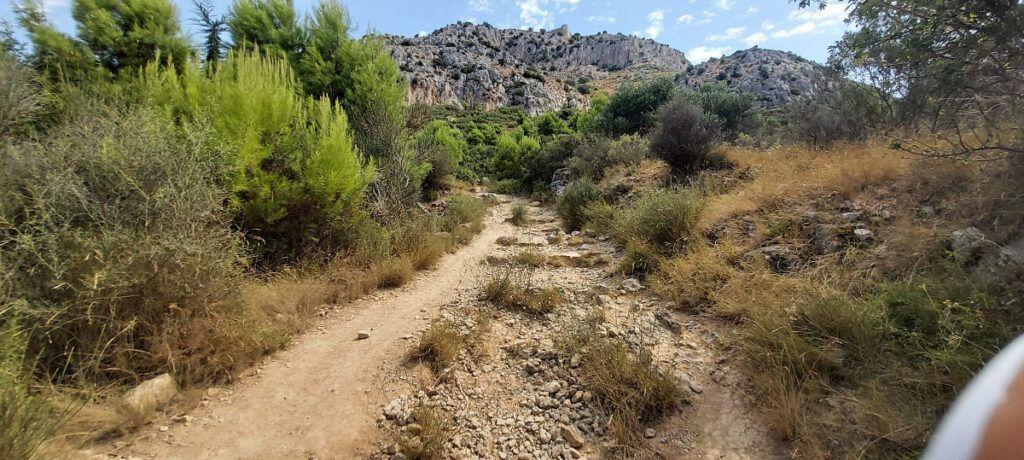 ruta montgri